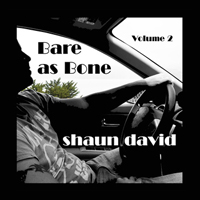 Shaun David - Bare as Bone Volume 2