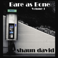 Shaun David - Bare as Bone Volume 1
