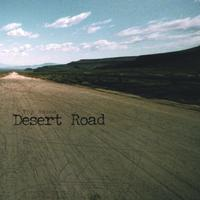 Toy House - Desert Road